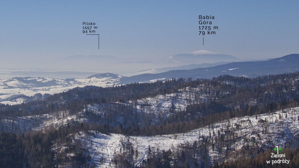 Widok na Babią Górę z polan poniżej szczytu Radziejowej