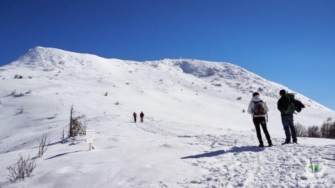 Przez przełęcz (po lewej), a potem dalej w kierunku szczytu. W oddali widać krzyż stojący na wierzchołku Tarnicy.