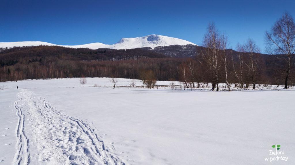 Tarnica zimą widziana z początkowego fragmentu szlaku z Wołosatego.