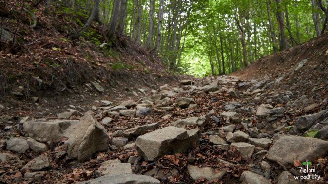 Beskidzka ścieżka jakich wiele. Niestety pomimo uroku nie spaceruje się nią specjalnie komfortowo.