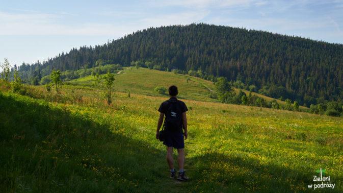 Jedna z wielu polan w Gorcach