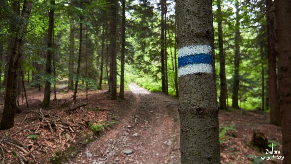 Niebieski kolor szlaku towarzyszył nam praktycznie przez cały dzień.