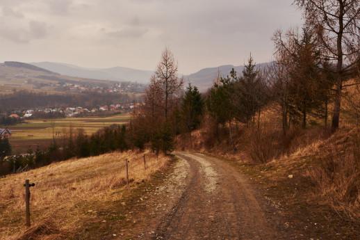 Początkowy fragment ścieżki na Górę Grzywacką.