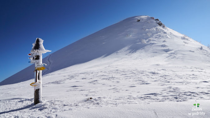 Widok z przełęczy w stronę Tarnicy