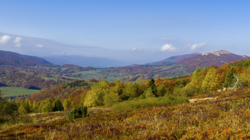 Wszystkie kolory jesieni. Po prawej widoczna Połonina Wetlińska, która miała być naszym kolejnym celem.