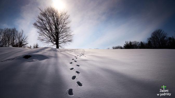 Zima w Pieninach tutaj jeszcze nie odpuszcza