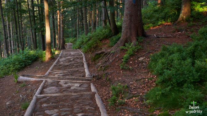 Ostatnie odcinki naszej wycieczki. Ścieżką na dół, później inną ścieżka jeszcze bardziej na dół... i koniec.