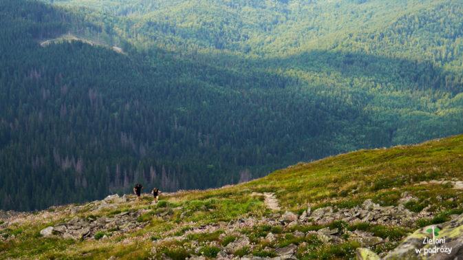 Turyści pokonujący Perć Akademików - najbardziej wymagający szlak na Babią Górę.