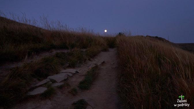 Noc zastaje nas na połoninie. Schodzimy już w całkowitej ciemności i w lesie pomimo latarek musimy mocno uważać.