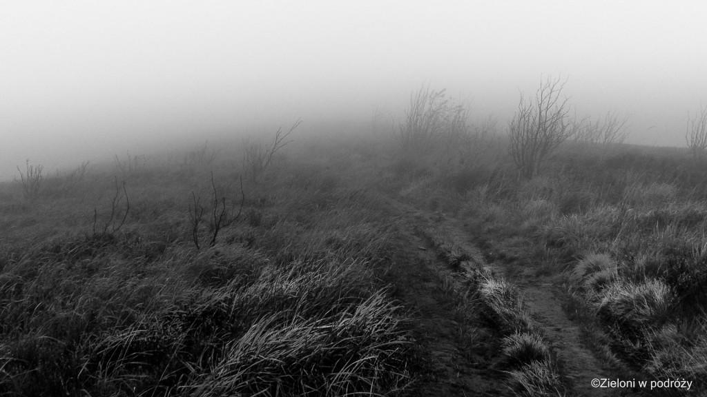 Mgła na Rawce. Bez widoków ale za to klimatycznie.