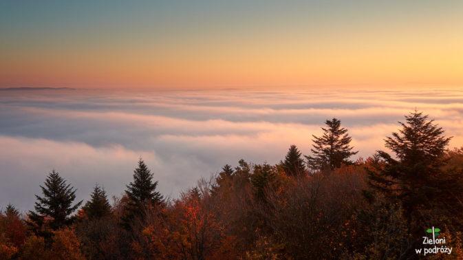 Mgły przelewają się przez nieliczne pagórki