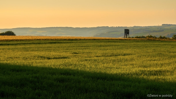 Pola, łąki i lasy. Wszystko to dla spragnionych spokoju