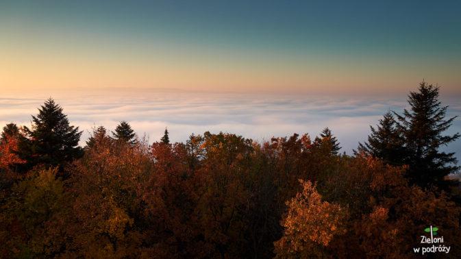 Słynne jesienne mgły i równie znane kolorowe lasy
