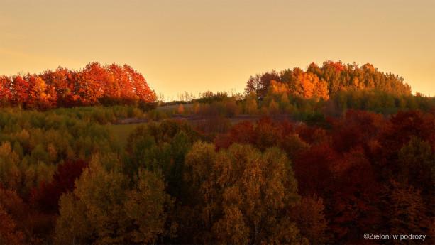 Wszystkie kolory jesieni