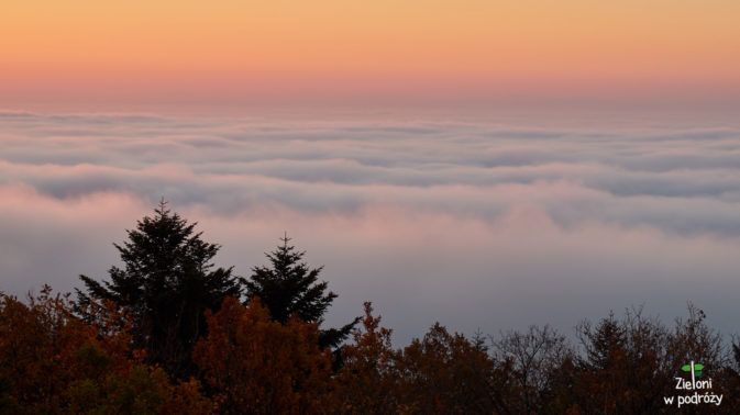 Wydaje się, że znajdujemy się w jedynym miejscu ponad poziomem mgieł