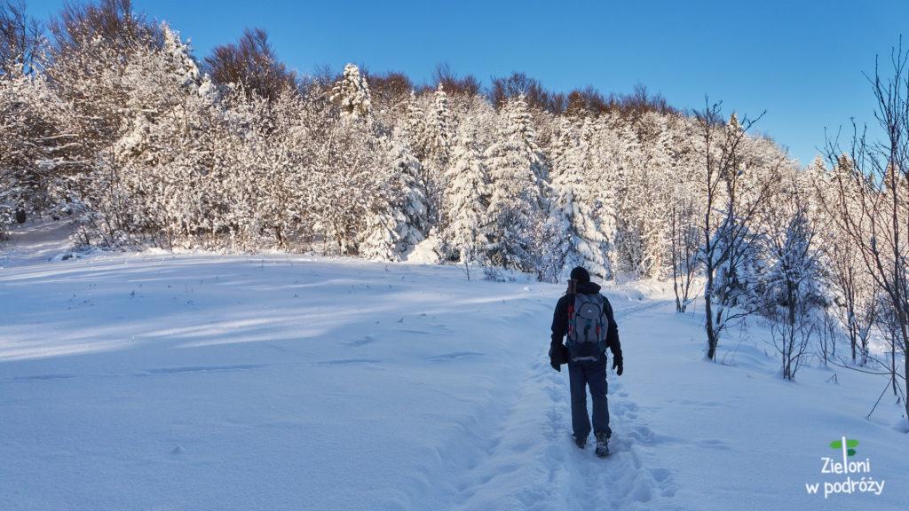 Krajobraz zmienił się na kompletnie zimowy