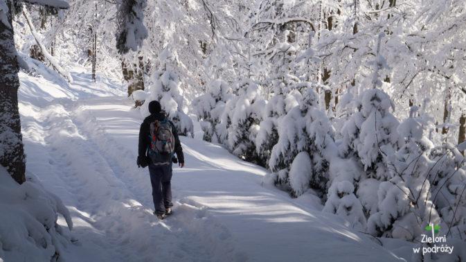Na Lubań zimą