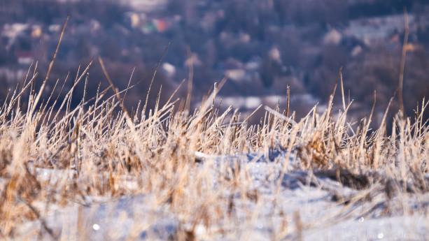 Skrzący się w słońcu śnieg dodaje sporo klimatu naszemu spacerowi