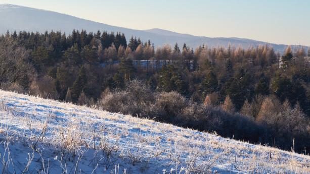 W Beskidzie Niskim ciągle zimowo
