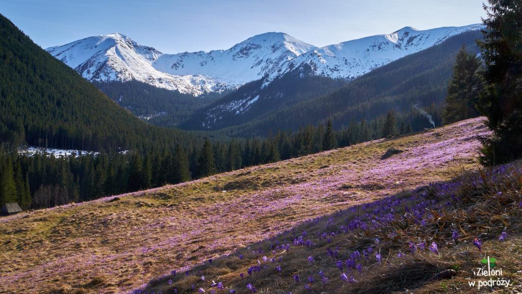 Tak wygląda wiosna w Tatrach. Piękne widoki na zakończenie tego umiarkowanie udanego dnia