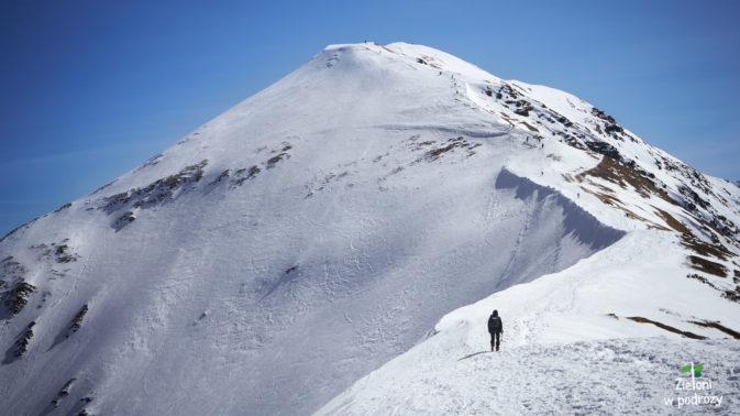 Wołowiec z tej perspektywy, wyglądał na kawał góry