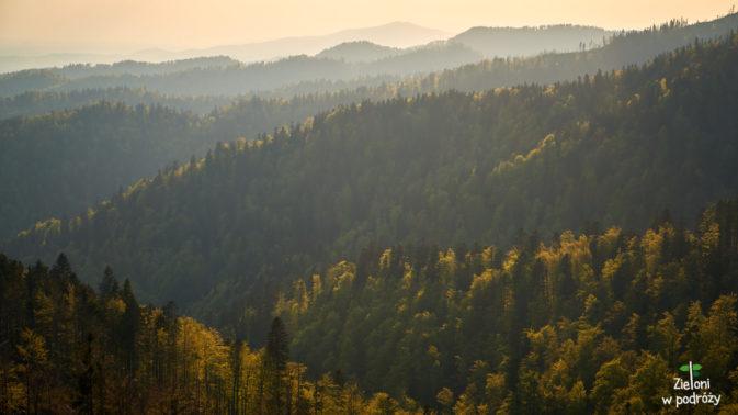 Beskidzkie lasy o zachodzie