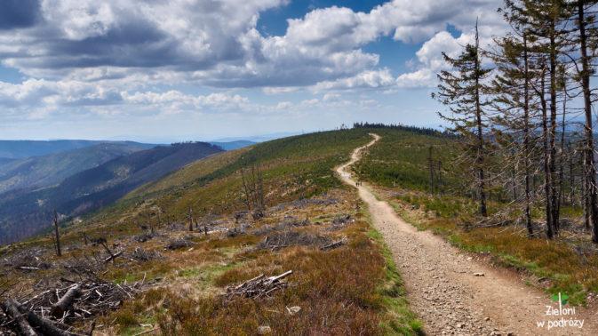 Nie spodziewaliśmy, że szlaki w Beskidzie Śląskim są tak widokowe