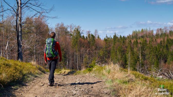 Zejście do lasu, a potem już z górki