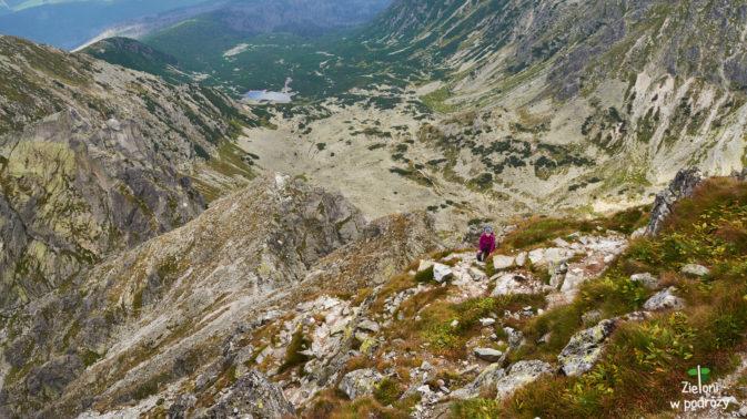 Dolina Pańszczyca w tle. Widok ze Skrajnego Granata