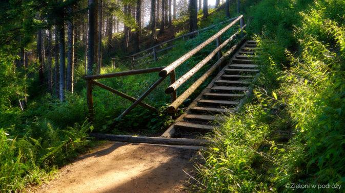 Poranki na szlakach zachęcają do wczesnego wstawania