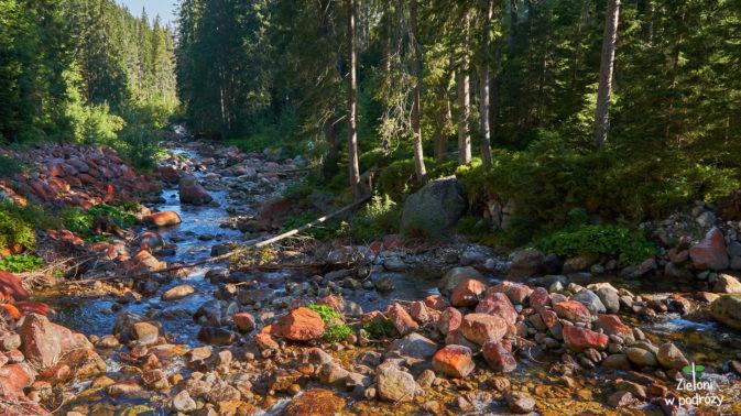 Potok Sucha Woda