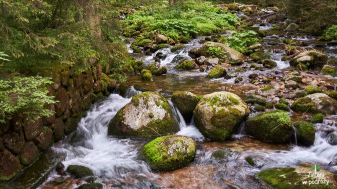 Szum potoku towarzyszy nam do końca wędrówki