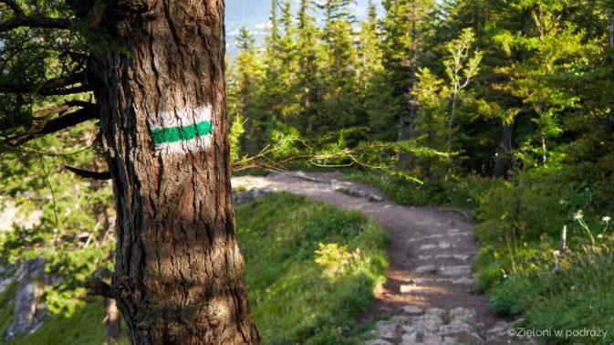 Zielony szlak towarzyszy nam przez całą wędrówkę