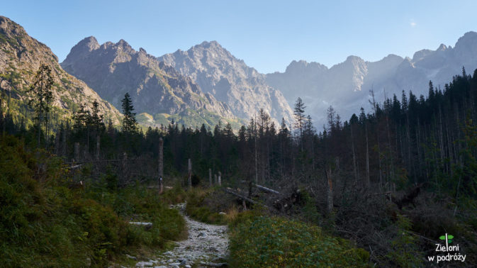 Rzucamy szczytom ostatnie spojrzenie i na dobre nikniemy w lesie