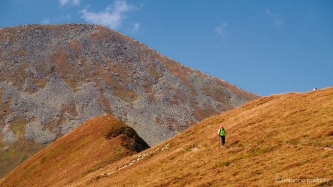 Krajobraz zupełnie odmienny od tego spotykanego w Tatrach Wysokich