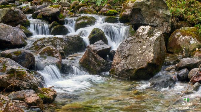 Górski i zapewne lodowaty potok