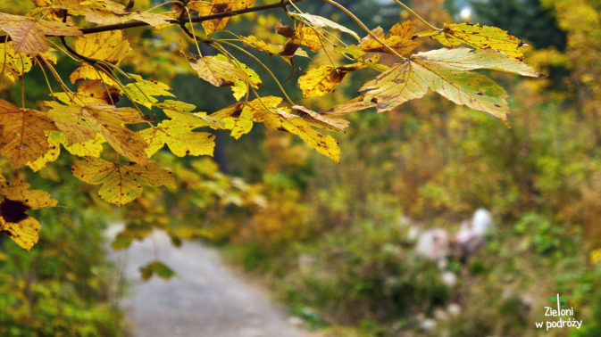 Jesień na szlakach