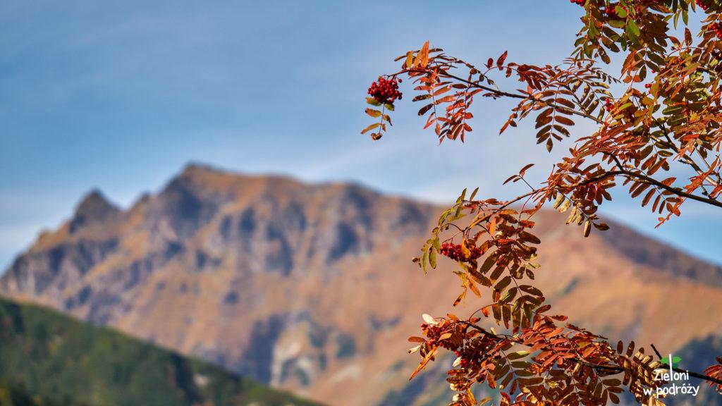 Jesień w górach może się podobać
