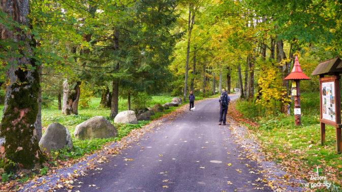Już pierwsze kroki zwiastują nadchodzącą jesień