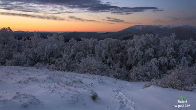 Ponad granica lasu jest już pięknie. Mała i Wielka Rawka w tle