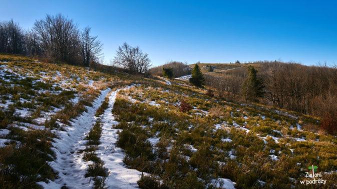Śnieżna ścieżka prowadzi wprost na Wielkie Jasło
