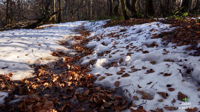 Okropna breja nie ułatwia miejscami marszu, no ale takie są uroki późnej jesieni