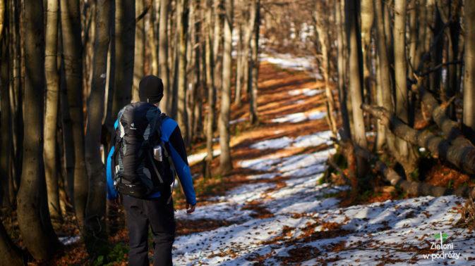 W lesie leży jeszcze trochę śniegu, który trochę utrudnia nam marsz