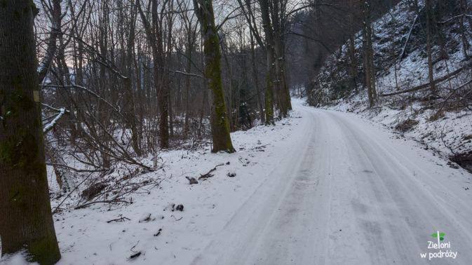 Zielony szlak na Sokolicę, prowadzi początkowo wzdłuż Dunajca