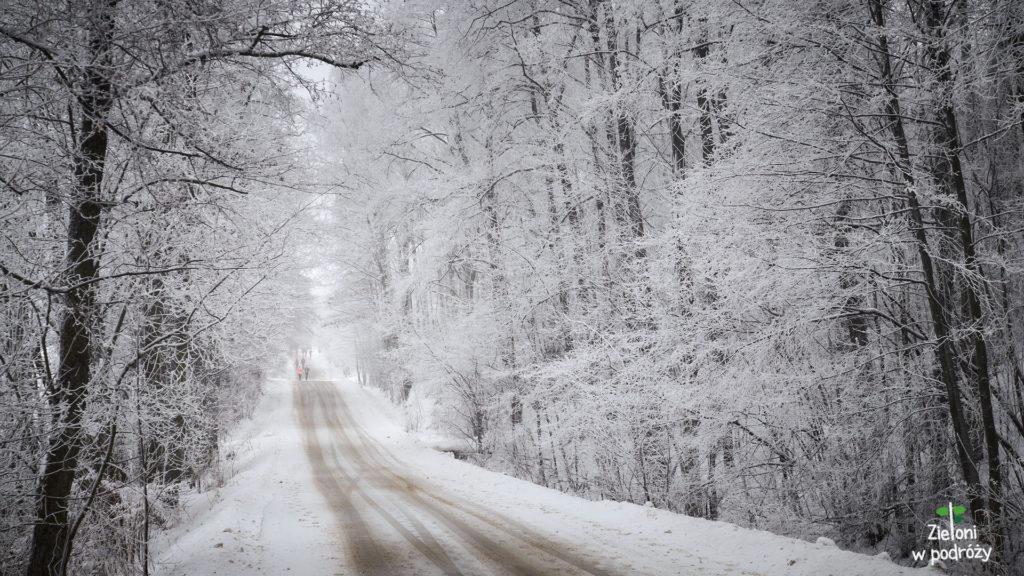 Śnieżne tunele jak z bajki