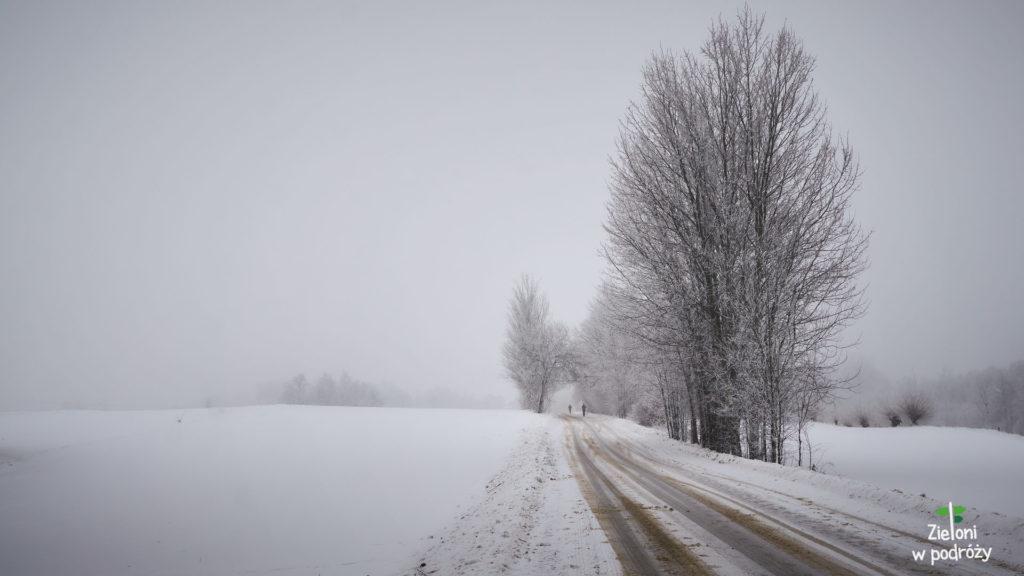 Przy stabilnej pogodzie ruszam zimą na szlak w stronę Łysicy