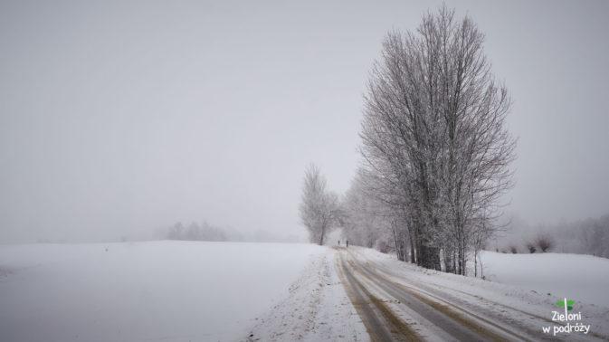 Przy stabilnej pogodzie ruszam na szlak w stronę Łysicy