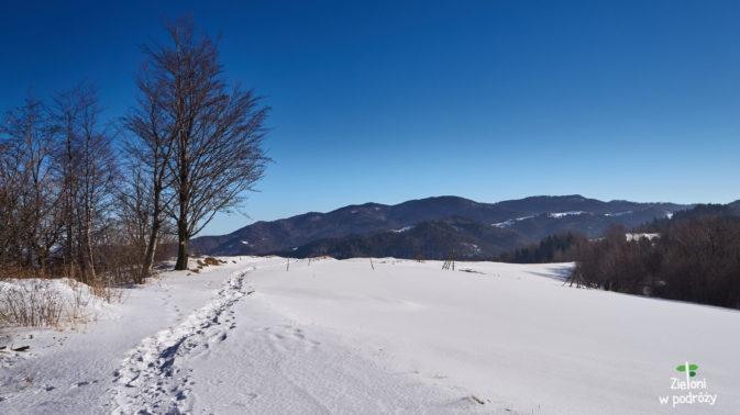 Błękit i biel - kolory górskiej zimy