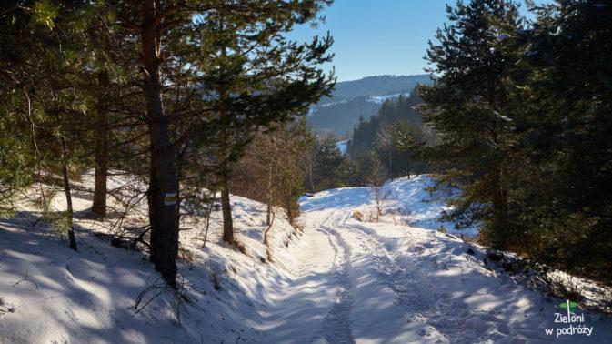 Ciepło i pogodnie. Idealna pogoda na zimowe wędrówki