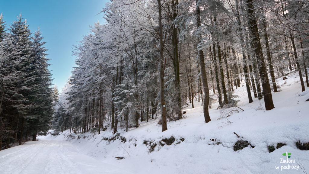 Gorce zimą prezentują się naprawde korzystnie